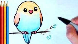 How To Draw Cute Parrot म फ त ऑनल इन व ड य