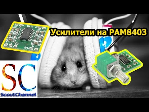 Усилители звука на PAM8403