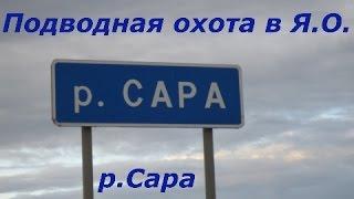 Ловля рака в ярославской области
