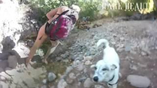 Fossil Creek Waterfalls - A Rare Beauty Destination
