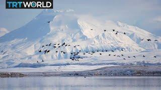 Alaska Climate Change: Glaciers shrink as average temperatures go up