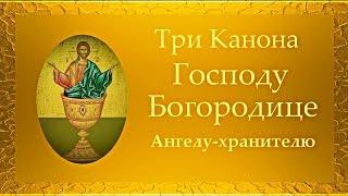 3 Канона: Иисусу Сладчайшему, Пресвятой Богородице, Ангелу Хранителю (ускоренный вариант)