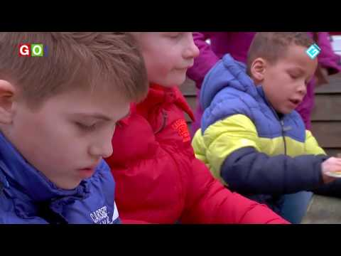 Kinderen maken vogelhuisjes - RTV GO! Omroep Gemeente Oldambt
