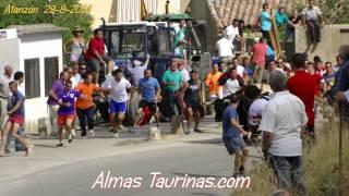 preview picture of video 'Atanzon encierro por el campo 29 8 2014'