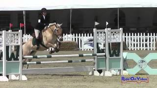 305S Rachael Smith on Cinco De Mayo SR Novice Amateur Show Jumping Woodside May 2015