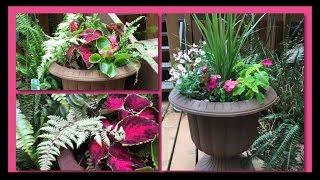 ~DIY~ Mixed Shade Garden Planter Pots~