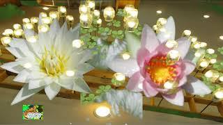 เพลงสปา บัวทิพย์ 3 ชม.แนวโชสิ : Spa Music : Holy Lotus ; Chosi Style