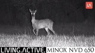 Minox NVD 650 digitales Nachtsichtgerät unboxing und Test