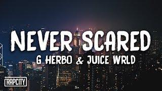 G Herbo - Never Scared ft. Juice WRLD (Lyrics)
