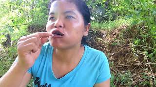 Primitive Technology - black spider on rock - Cooking eating delicious