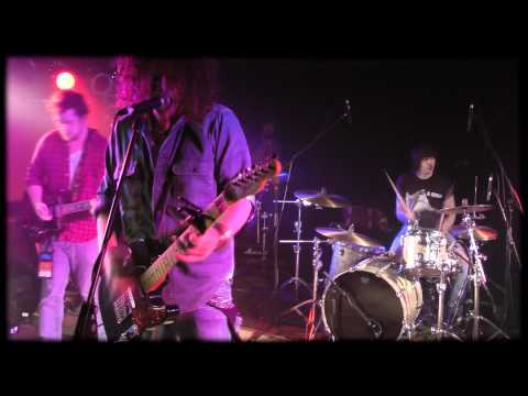 The Stogies - Any Old Friends Video