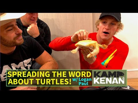Bringing My Turtle to Logan Paul, the Real Story Behind the Scenes