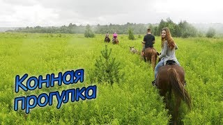 Прогулка на лошадях | Конный клуб «Аллюр»