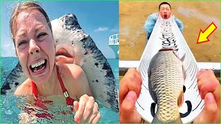 Best Funny Videos  - Try to Not Laugh 😆😂🤣#155