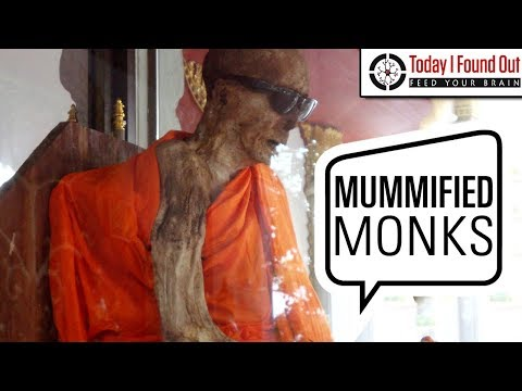 The Curious Case of Self Mummification