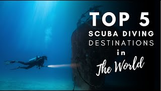 Best Dive Locations in The World (2020 Guide)