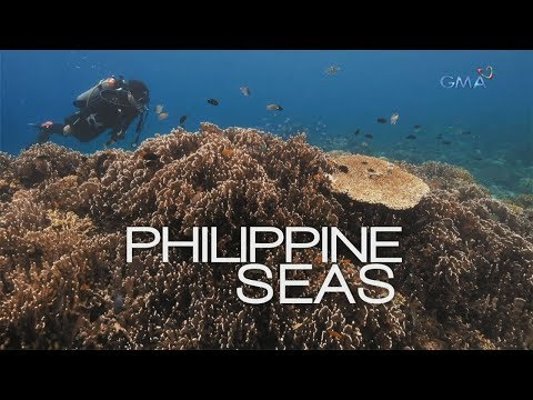 Philippine Seas, A Documentary By Atom Araullo (full Episode)