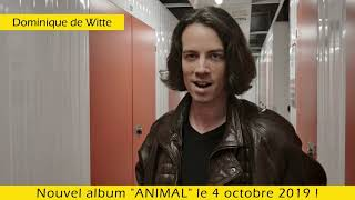 "Mon 3e album ""ANIMAL"" sortira le 4 octobre 2019 - TEASER #3 et #4"