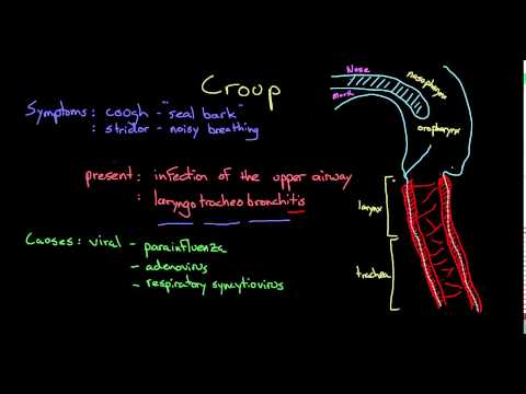 Video What is croup?