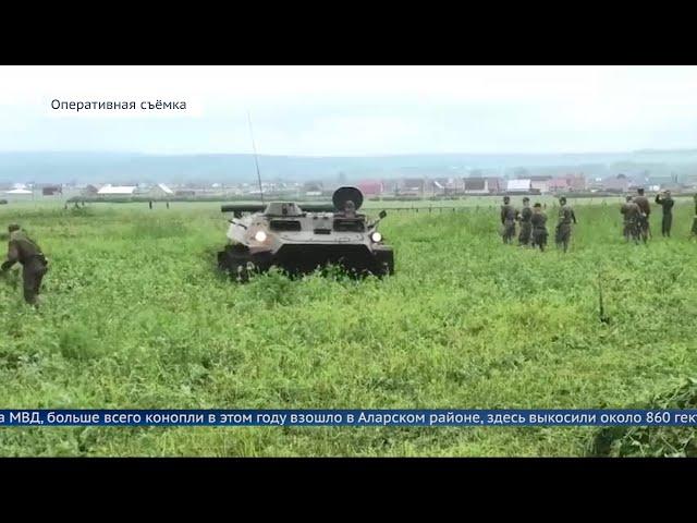 В Иркутской области коноплю давили БТРом