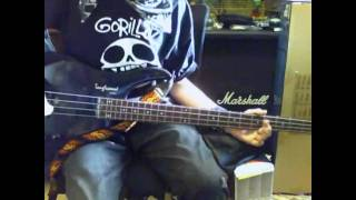Anti-Flag If you wanna steal bass (cover)
