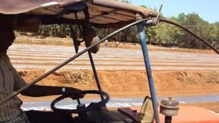 Watermelon Cultivation (Using Automated Plastic Mulches And Drip Irrigation - P.K.Jayakrishnan)