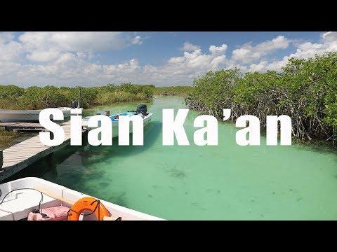 Sian Ka'an Biosphere, Tulum, Mexico | Canon 80D | Virtual Trip