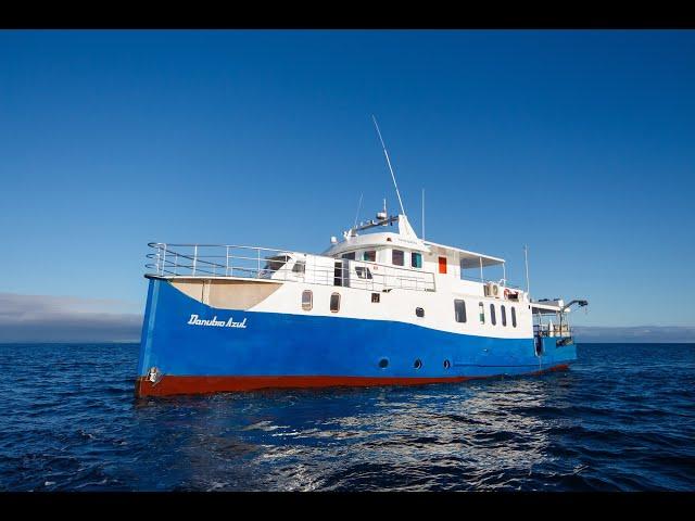 Danubio Azul Galapagos Diving Cruise