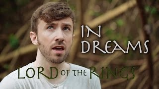 Lord of the Rings - In Dreams - Peter Hollens (breaking of the fellowship)