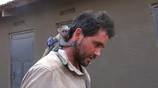 Baby Vervet Monkey Rescued from African Brush Fire