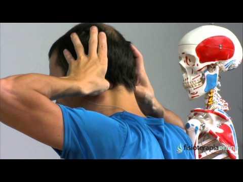 Tratamiento del dolor de cabeza y cuello - Fisioterapia Bilbao