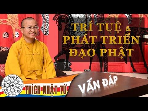 Vấn đáp: Trí tuệ và phát triển đạo Phật (17/04/2011) Thích Nhật Từ