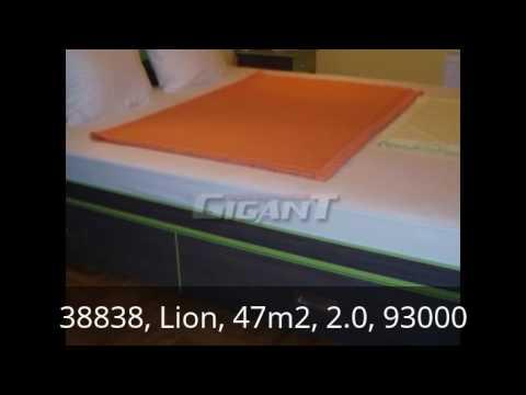 Zvezdara Lion 47m2 93000e