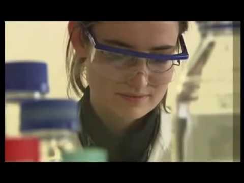 Il miele di Manuka MGO™ spiegato dalla scienza