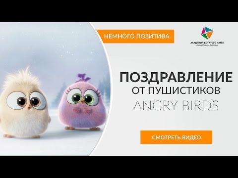 ПОЗДРАВЛЕНИЕ С НАСТУПАЮЩИМ ОТ ANGRY BIRDS СКАЧАТЬ БЕСПЛАТНО