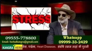 Dashkarma Therapy Kangra Herb