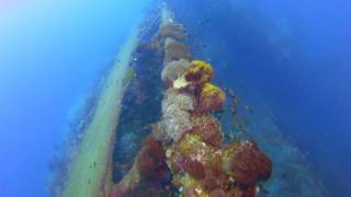 Diving the SS Yongala Shipwreck from Alva Beach Ayr, Qld, Australia.