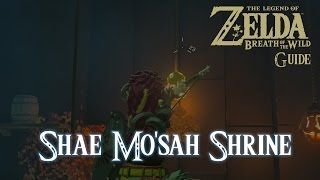 The Legend of Zelda: Breath of The Wild - Shae Mo'sah Shrine [Guide] [Switch]