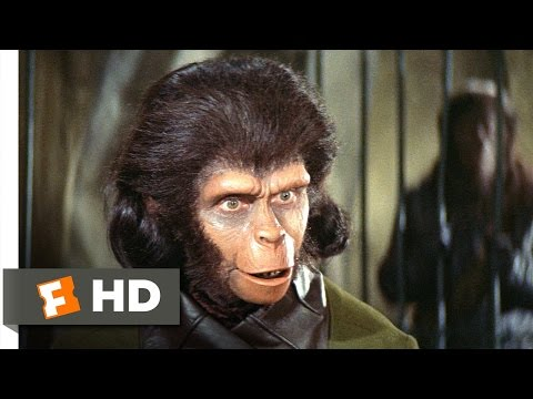 Planet Of The Apes (2/5) Movie CLIP - Human See, Human Do (1968) HD Mp3