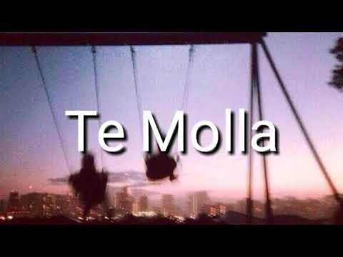 Te Molla песня из Тик Ток