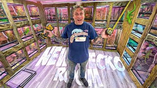 BUILDING MY NEW GECKO ROOM!! ALMOST DONE!! | BRIAN BARCZYK
