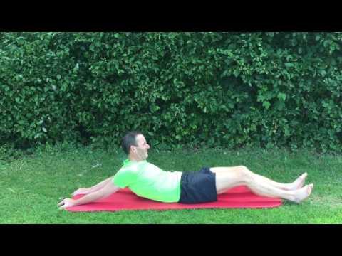 Die Osteochondrose des Brustteiles des Grases