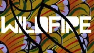 (LYRICS) Wildfire (Remix)- SBTRKT ft. Little Dragon & Drake