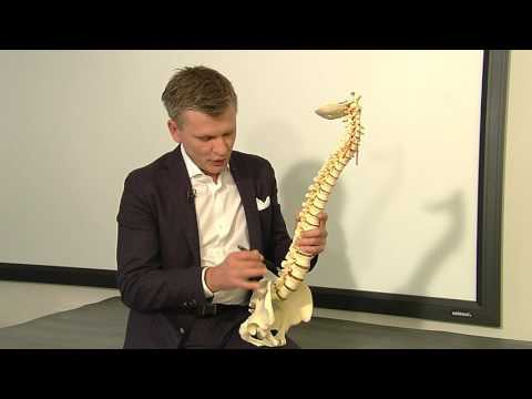 Hängen Rückenschmerzen