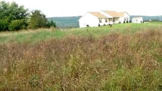Homes for Sale - Kapalua Court Martinsburg WV 25403 - Rick Boswell