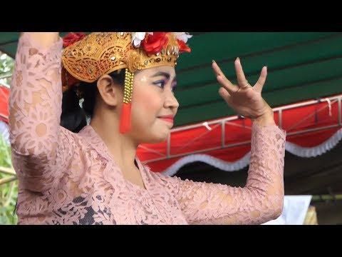 Atraksi Seni Dan Budaya Bali Aga Desa Pedawa Buleleng Bali