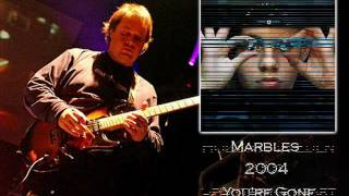 Steve Rothery (Marillion) Best Guitar Solos - Part2