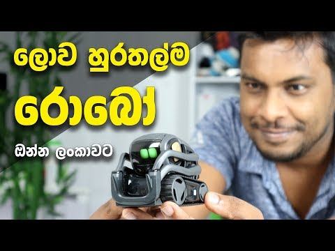 the-worlds-cutest-robot--sri-lanka-