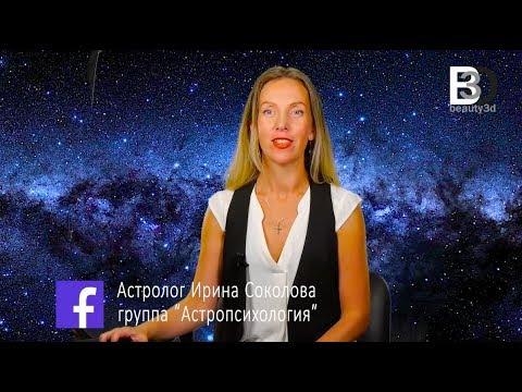 Год дракона 2012 гороскоп годам