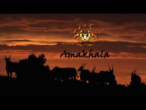 A video on the magnificent Amakhala Game Reserve, aimed on informing viewers on on the plains, its wildlife and the foundation behind the conservation of these and different local communities.